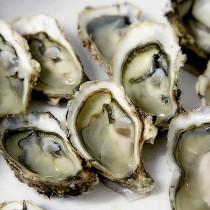 Можно ли есть морепродукты во время беременности?